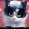 Download Frosty The Kitten v1.0.2 Apk